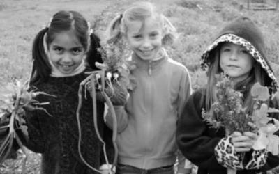 Un jardín escolar de permacultura